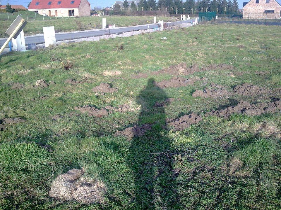 Terrains du constructeur MAISONS FRANCE CONFORT • 500 m² • BAMBECQUE