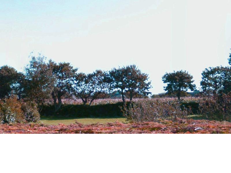 Terrains du constructeur TRECOBAT • 475 m² • PLOUVIEN