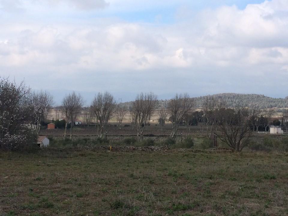 Terrains du constructeur LES MAISONS DE MANON • 982 m² • ESCALES