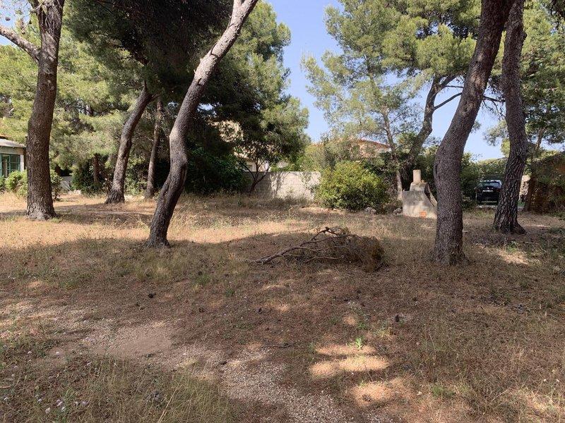 Terrains du constructeur VILLAS PRISME • 450 m² • SAUSSET LES PINS