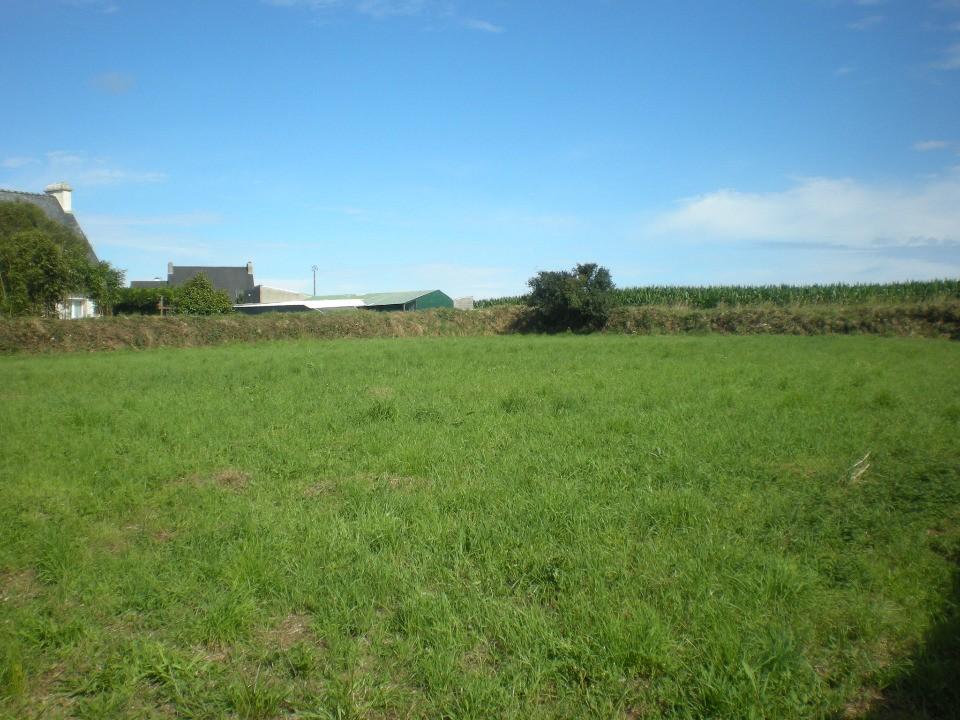 Terrains du constructeur MAISONS FRANCE CONFORT • 2000 m² • MONDRAGON