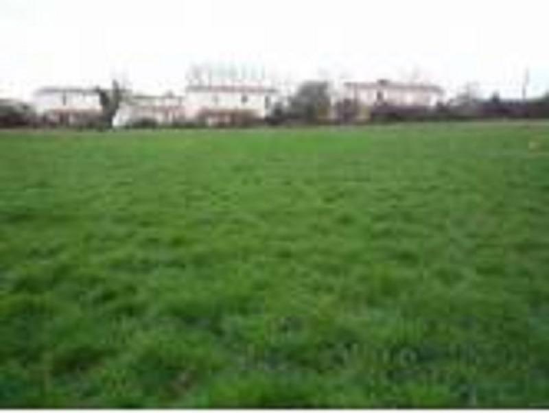 Terrains du constructeur MAISONS FRANCE CONFORT • 357 m² • LORGIES
