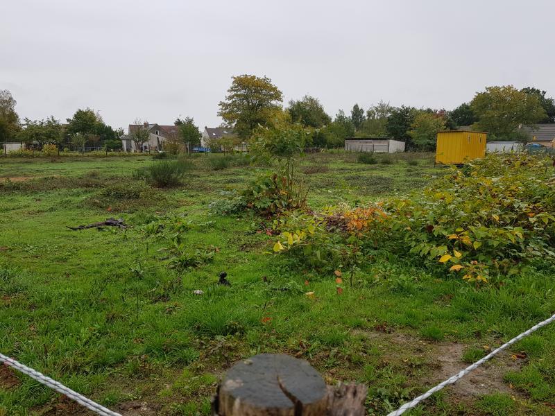 Terrains du constructeur PLANET FORCE • 0 m² • CHAMBON LA FORET
