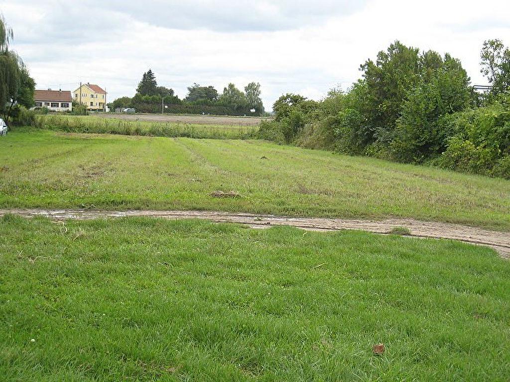 Terrains du constructeur AGENCE DU MONTOIS • 1461 m² • BRAY SUR SEINE