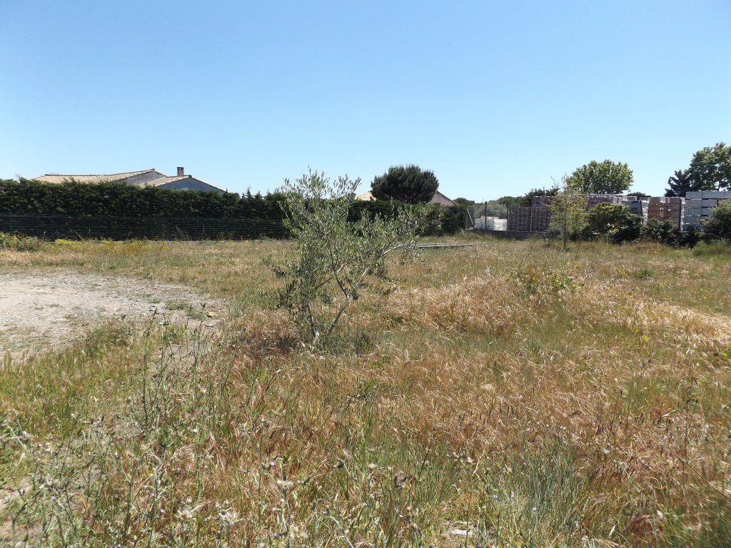 Terrains du constructeur IMMOBILIER DU MINERVOIS • 1074 m² • RIEUX MINERVOIS