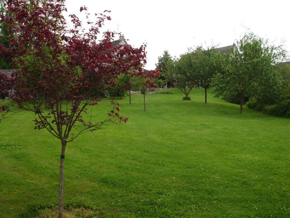 Terrains du constructeur MAISONS FRANCE CONFORT • 600 m² • ACHERES LA FORET