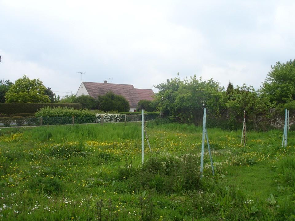 Terrains du constructeur MAISONS FRANCE CONFORT • 780 m² • ROZAY EN BRIE