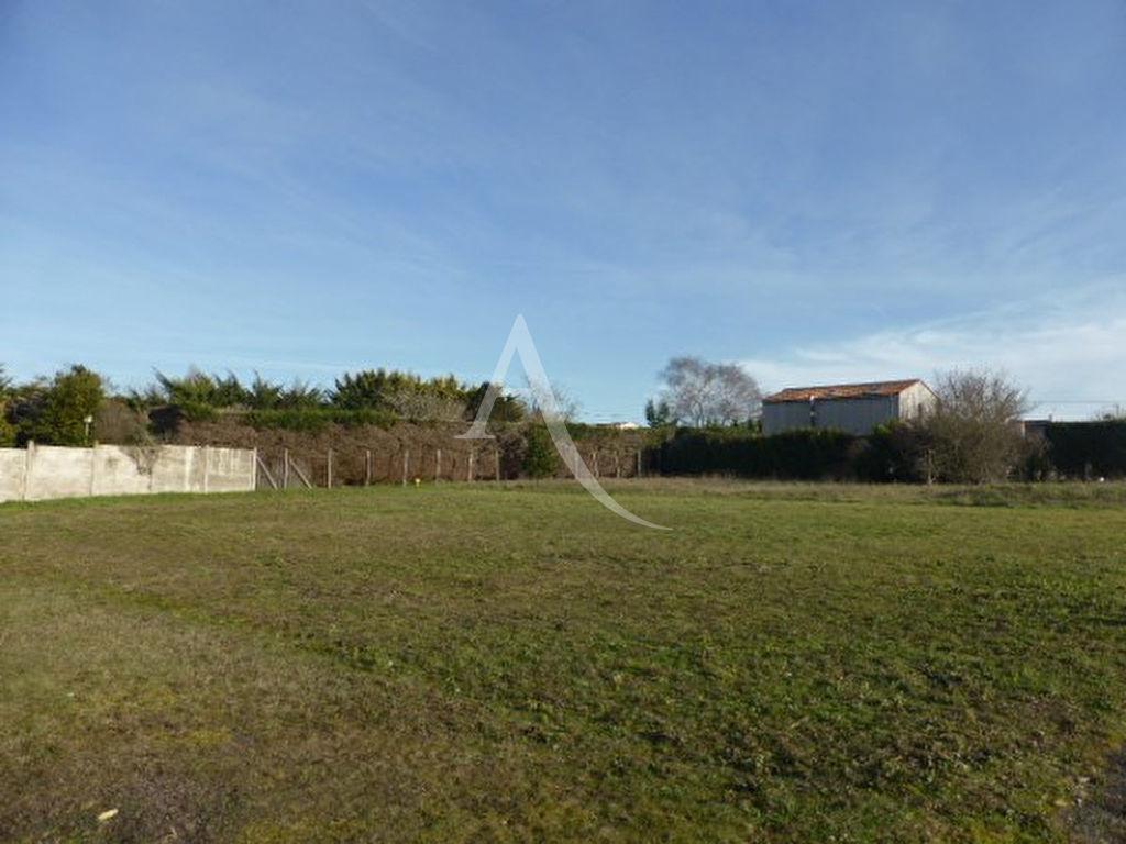 Terrains du constructeur L ADRESSE LONGEVILLE SUR MER • 920 m² • ANGLES