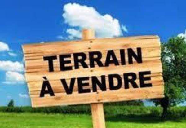 Terrains du constructeur IAD FRANCE • 505 m² • REIMS