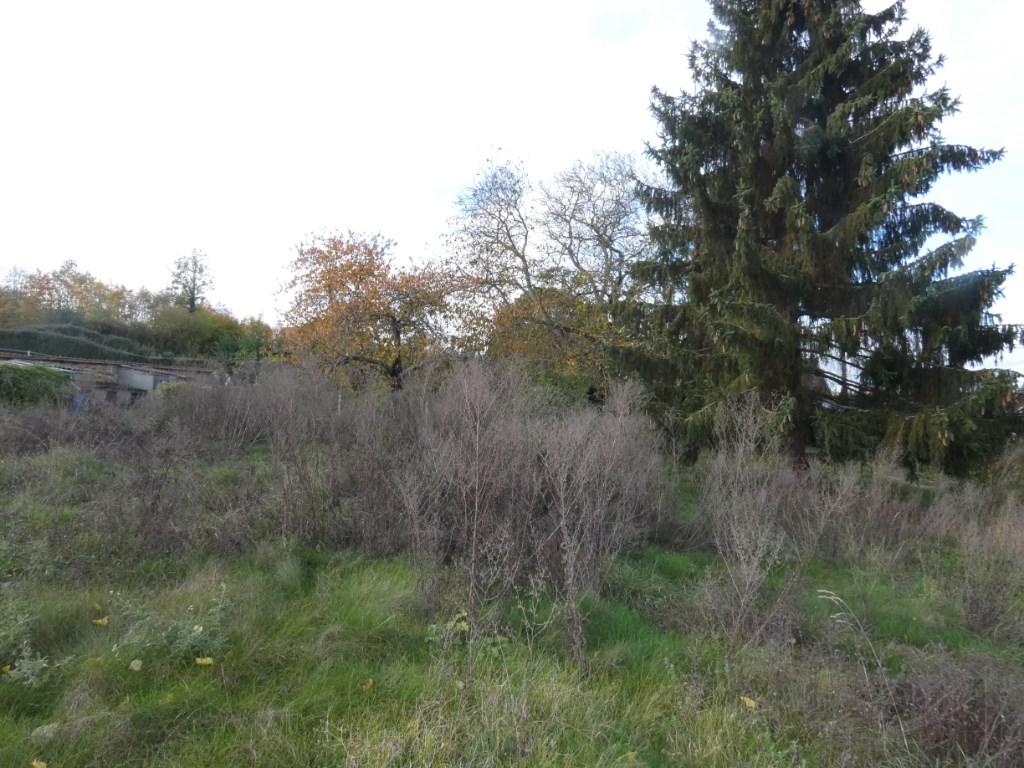 Terrains du constructeur LAFORET IMMOBILIER GAILLON • 714 m² • GAILLON