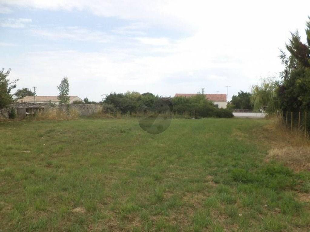 Terrains du constructeur icocc immobilier • 0 m² • MOREILLES
