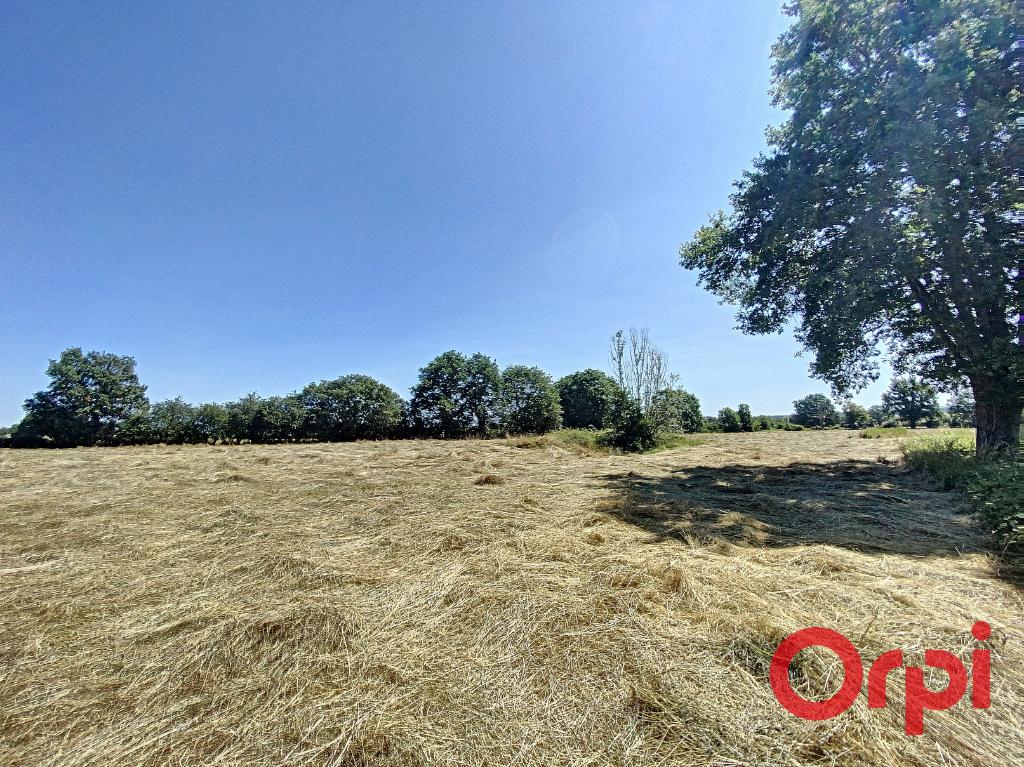Terrains du constructeur ORPI LES HALLES • 1830 m² • AINAY LE CHATEAU