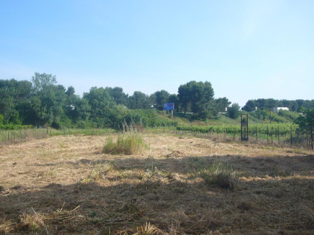 Terrains du constructeur BARRAU IMMO • 2600 m² • VILLENEUVE LES BEZIERS
