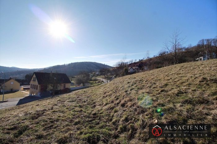 Terrains du constructeur AGENCE IMMOBILIERE L ALSACIENNE • 1811 m² • VILLE