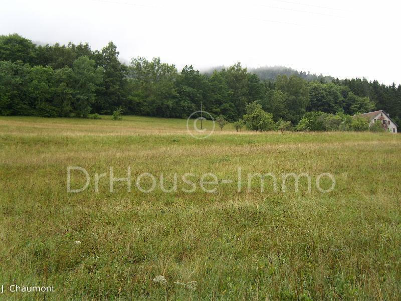 Terrains du constructeur DR HOUSE IMMO • 3500 m² • SALLES