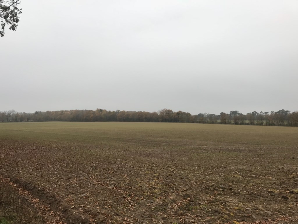 Terrains du constructeur LAFORET NORD DEUX-SÈVRES Agence de Moncoutant • 0 m² • CARQUEFOU