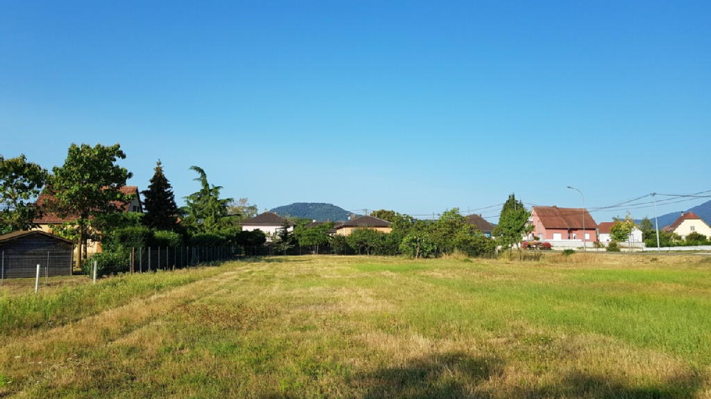 Terrains du constructeur BOLTZ IMMOBILIER • 0 m² • SCHERWILLER