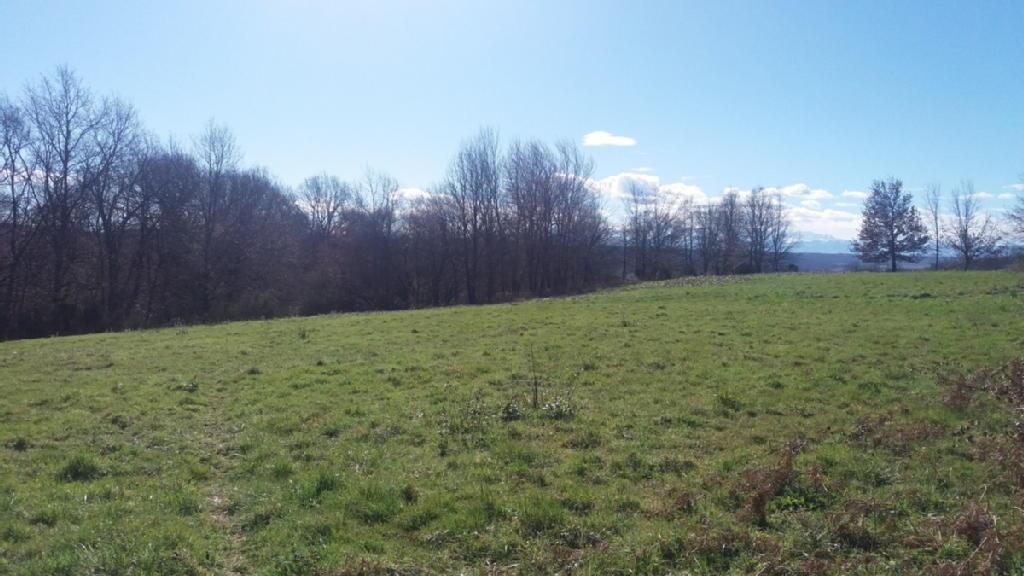 Terrains du constructeur ABAFIM • 7700 m² • MAUBOURGUET