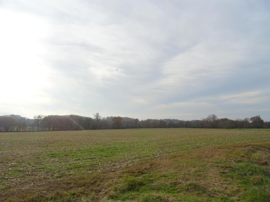 Terrains du constructeur Stéphane Plaza Immobilier Arthez de Bearn • 136674 m² • SAINT MEDARD