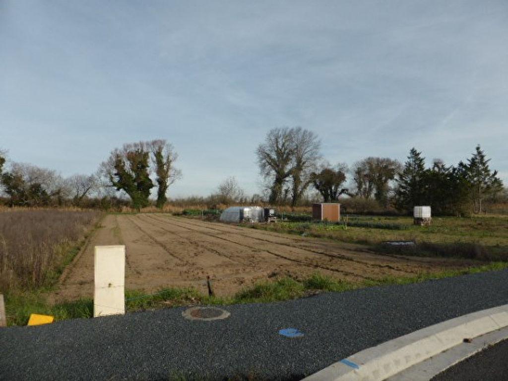 Terrains du constructeur L ADRESSE LONGEVILLE SUR MER • 985 m² • LONGEVILLE SUR MER