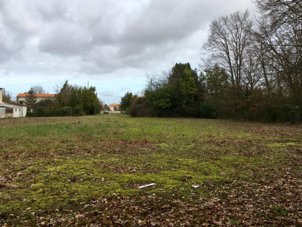 Terrains du constructeur IMMO CONCEPT • 3323 m² • SAINTES