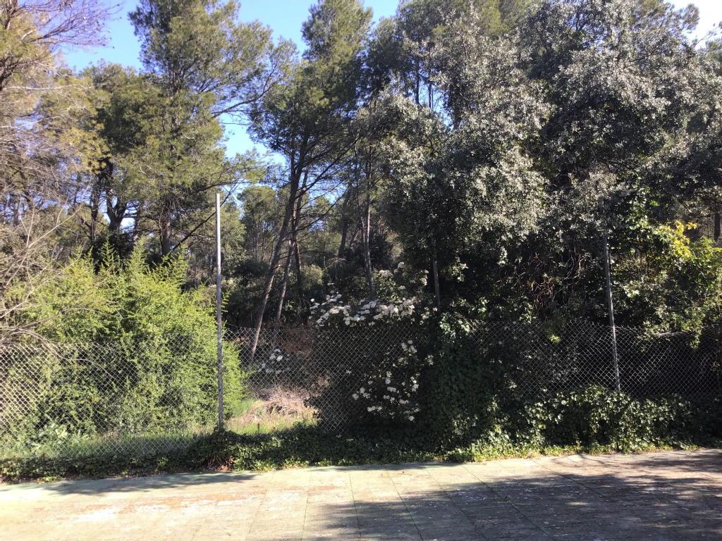 Terrains du constructeur EXPERTIMO • 1186 m² • CAVAILLON