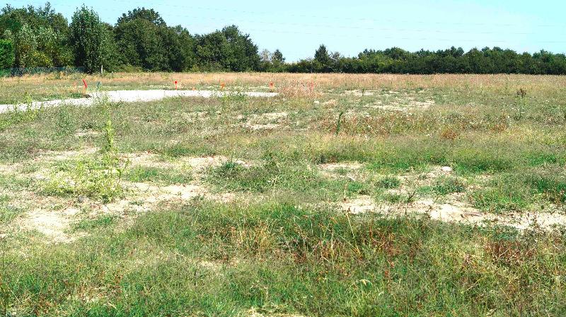 Terrains du constructeur SAFTI • 805 m² • LAGARDELLE SUR LEZE