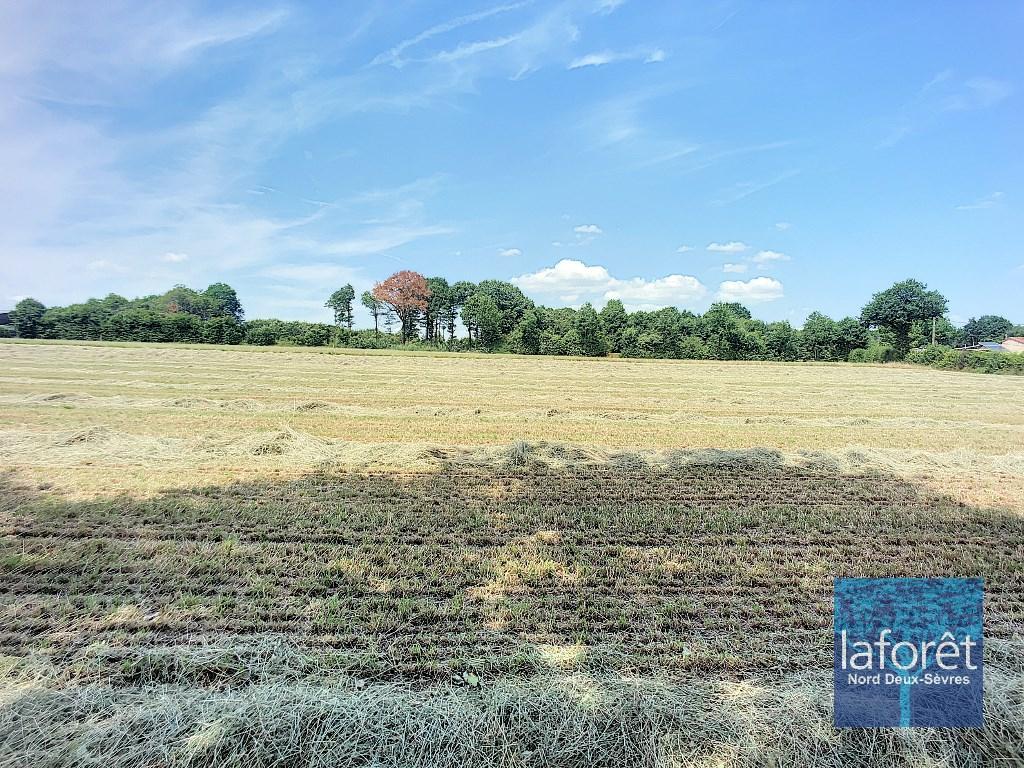 Terrains du constructeur LAFORET NORD DEUX-SÈVRES Agence de Mauleon • 2258 m² • BRETIGNOLLES