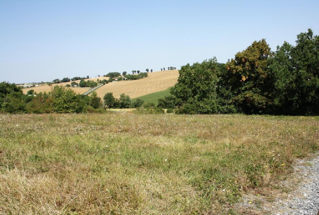 Terrains du constructeur IMMOPRO • 0 m² • SAMATAN