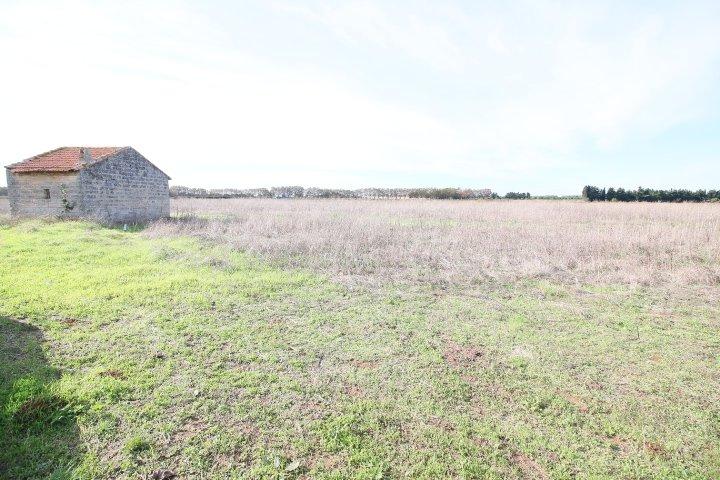 Terrains du constructeur IMMOVANCE • 18589 m² • MAUGUIO