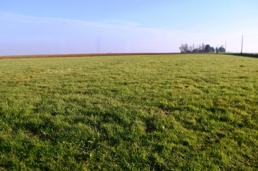 Terrains du constructeur ORPI DB PARTNERS • 800 m² • CHAULNES