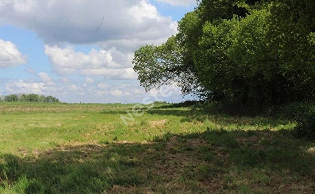 Terrains du constructeur NESTENN LOCMINE • 1480 m² • BULEON