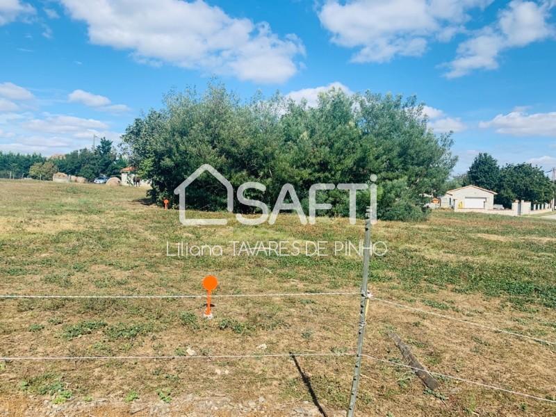 Terrains du constructeur SAFTI • 863 m² • CARBONNE