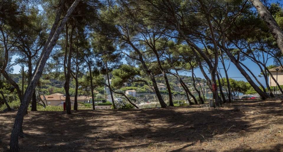 Terrains du constructeur CREDIT AGRICOLE IMMOBILIER PROMOTION • 0 m² • SANARY SUR MER