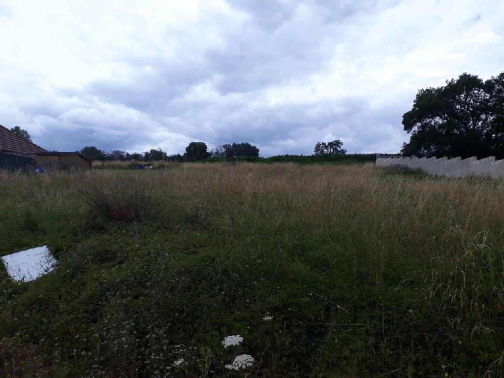 Terrains du constructeur AGENCE ARMANCE IMMOBILIER • 1580 m² • CHAOURCE