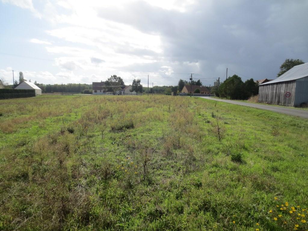 Terrains du constructeur RICONO IMMOBILIER • 2860 m² • CHATILLON SUR CHER