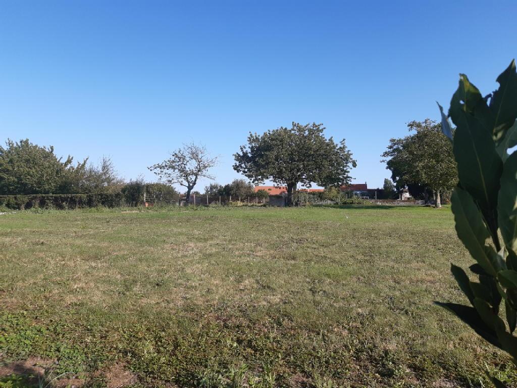 Terrains du constructeur MDI 85 LA MOTHE ACHARD • 2500 m² • LA MOTHE ACHARD