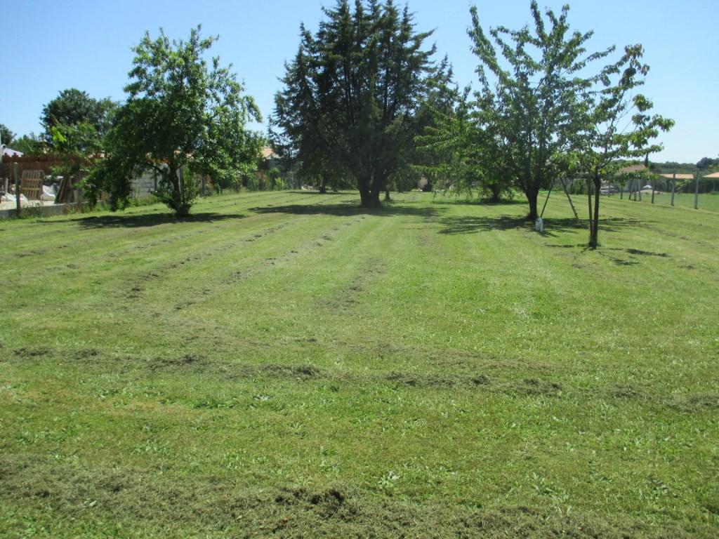 Terrains du constructeur AJP IMMOBILIER SAINTES • 1000 m² • LE DOUHET