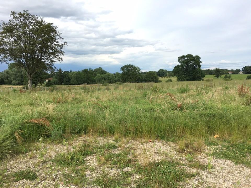 Terrains du constructeur MAISONS FRANCE CONFORT • 700 m² • CHAVEYRIAT