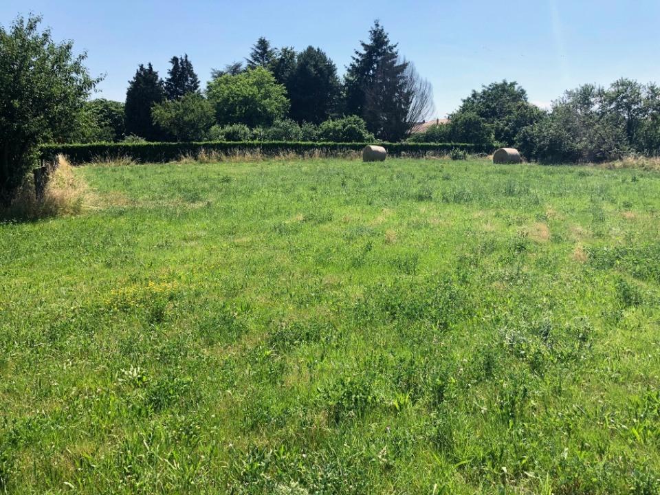 Terrains du constructeur MAISONS FRANCE CONFORT • 1790 m² • SAINT CYR SUR MENTHON