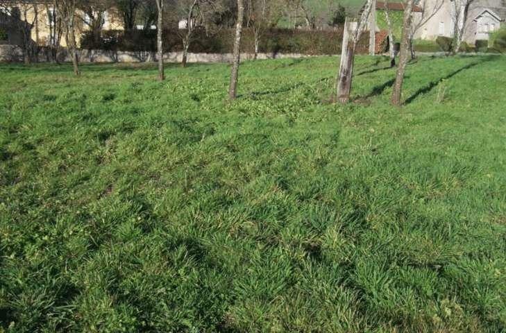 Terrains du constructeur MAISONS BALENCY • 1461 m² • THIBERVILLE