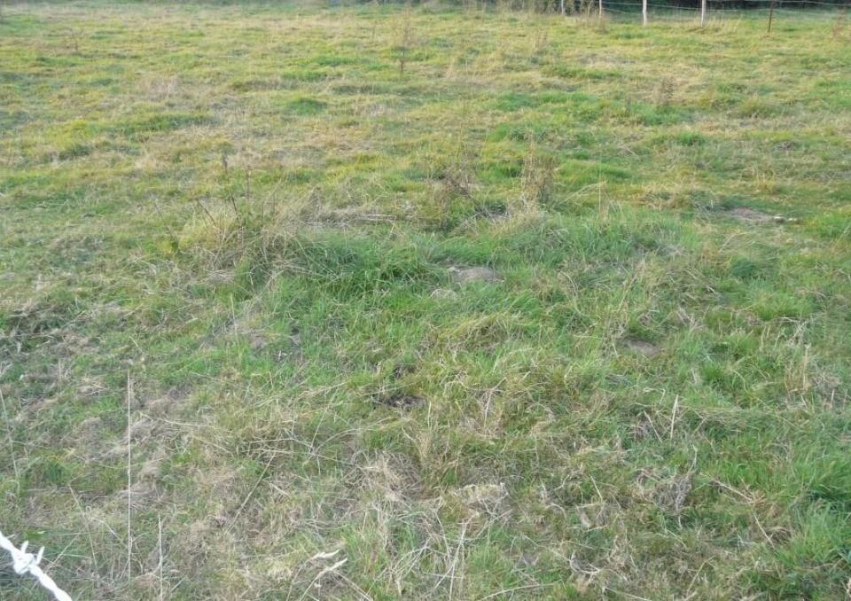 Terrains du constructeur MAISONS BALENCY • 1100 m² • NULLEMONT