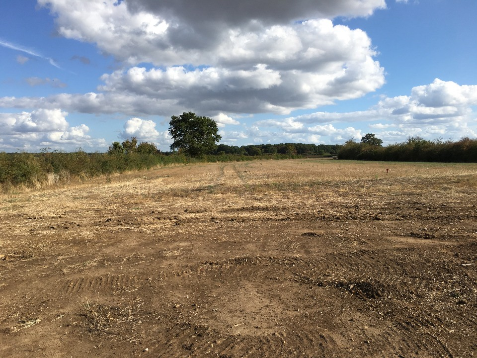 Terrains du constructeur MAISONS FRANCE CONFORT • 1047 m² • GRANGES
