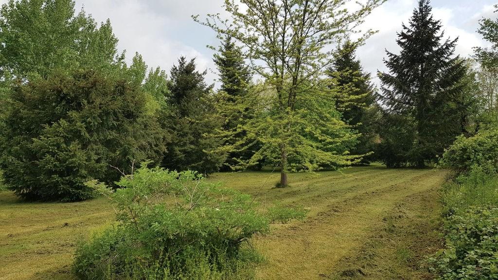 Terrains du constructeur L ADRESSE - Albi Patrimoine Immobilier • 0 m² • GRAULHET