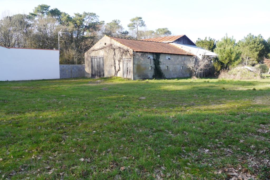 Terrains du constructeur GUY HOQUET L IMMOBILIER • 1301 m² • SAINT HILAIRE DE RIEZ