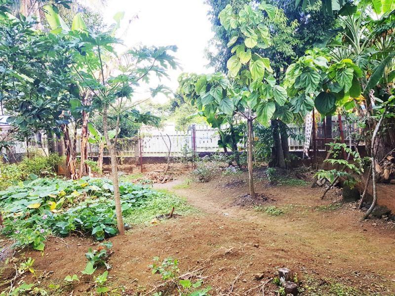 Terrains du constructeur TEKA IMMO • 507 m² • SAINTE SUZANNE