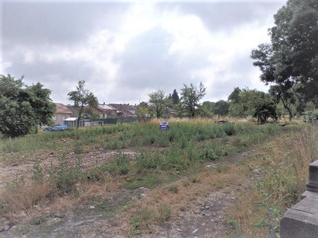 Terrains du constructeur ABEL CONSULTANTS • 0 m² • OTTONVILLE