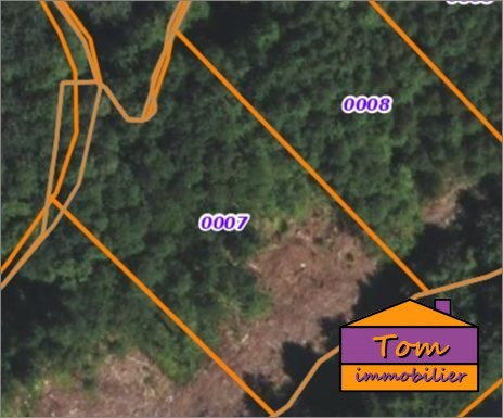 Terrains du constructeur TOM IMMOBILIER • 0 m² • SPARSBACH