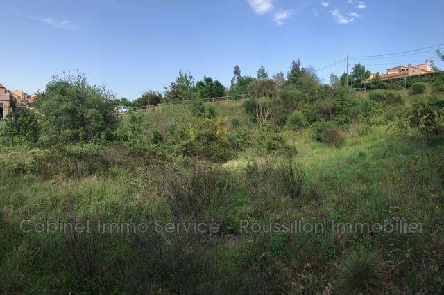 Terrains du constructeur IMMO SERVICE • 1000 m² • MAUREILLAS LAS ILLAS