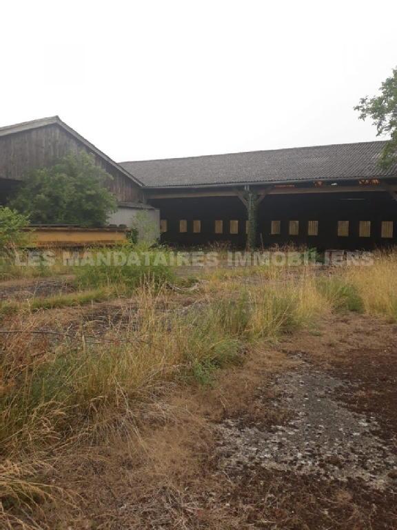 Terrains du constructeur MANDATAIRES IMMOBILIER • 2523 m² • MARTIGNE BRIAND